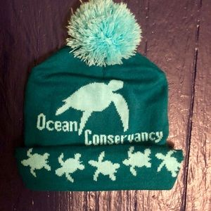 Accessories - Pom Pom Green & Turquoise Hat